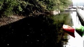 Dancing Kayaks