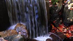 Water Fall at Fall