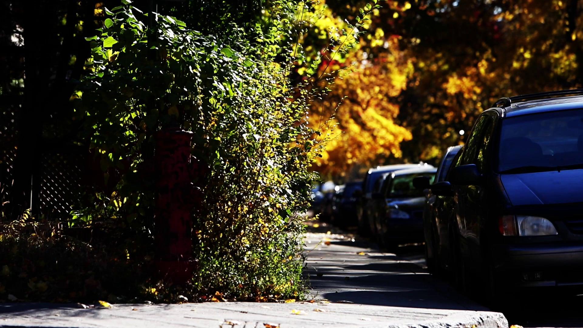 Sidewalk Passings
