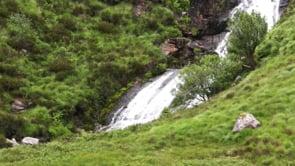 Waterfall & Greenery