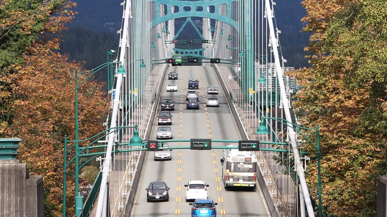 Bridge Activity