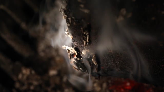 Smoky Embers